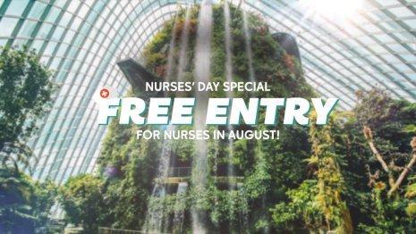 Nurses' Day Special